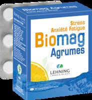 Lehning Biomag Comprimés à Croquer Agrumes B/90 à AURILLAC
