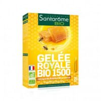 Santarome Bio Gelée Royale 1500 Solution Buvable 20 Ampoules/10ml à AURILLAC