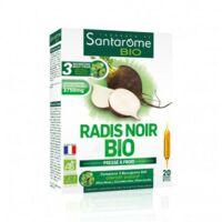 Santarome Bio Radis Noir Solution Buvable 20 Ampoules/10ml à AURILLAC