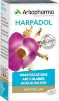 Arkogelules Harpagophyton Gélules Fl/150 à AURILLAC