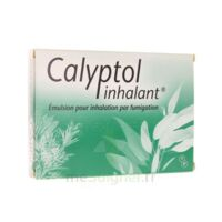 CALYPTOL INHALANT, émulsion pour inhalation par fumigation à AURILLAC