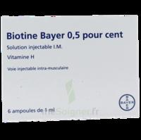 Biotine Bayer 0,5 Pour Cent, Solution Injectable I.m. à AURILLAC
