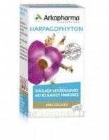 Arkogelules Harpagophyton Gélules Fl/45 à AURILLAC