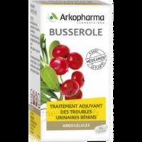Arkogelules Busserole Gélules Fl/45 à AURILLAC