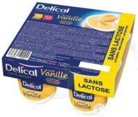 Delical Creme Dessert Hp Hc Sans Lactose, Pot 200 G X 4 à AURILLAC
