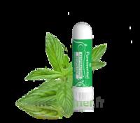 Puressentiel Respiratoire Inhaleur Respiratoire Aux 19 Huiles Essentielles - 1 Ml à AURILLAC