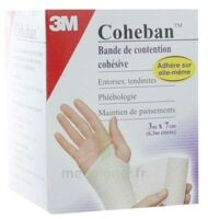 Coheban, Blanc 3 M X 7 Cm