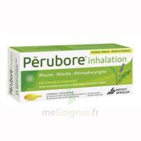 Perubore Caps Inhalation Par Vapeur Inhalation Plq/15 à AURILLAC