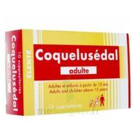 Coquelusedal Adultes, Suppositoire à AURILLAC