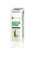 Huile Essentielle Bio Eucalyptus Citronné à AURILLAC