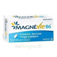 Magnevie B6 100 Mg/10 Mg Comprimés Pelliculés Plaq/60 à AURILLAC