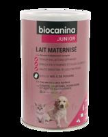 Biocanina Lait Poudre Maternisé B/400g à AURILLAC