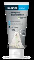 Biocanina Shampooing éclat Poils Blancs 200ml à AURILLAC
