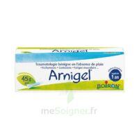 Boiron Arnigel Gel T(alumino-plastique)/45g à AURILLAC